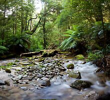 A Creek Somewhere Else. by Mark Jones