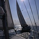 Sailing on Grevelingenmeer (The Netherlands) by PeterBusser