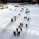 """""""THE WORLDS LONGEST SKATING TRAIL"""" by Larry Trupp"""
