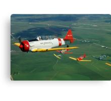 Formation Flight Canvas Print