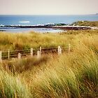 *Killarny a small Beach - Warrnambool, Vic. Australia* by EdsMum