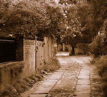 Dream Road by Rodney Williams
