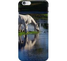 Reflections of silver iPhone Case/Skin