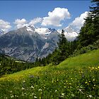 Switzerland Landscape by AnnieSnel