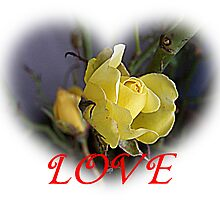 Yellow Rose Love Heart Valentine by Jonice