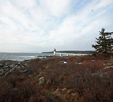 Marshall Point Lighthouse by Rebecca Brann