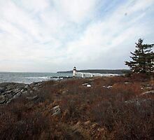 Marshall Point Lighthouse by Rebecca Brann
