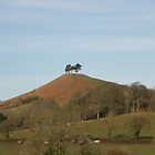 Colmer hill by motorista