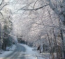 Icy Road in New England by Linda Marlowe