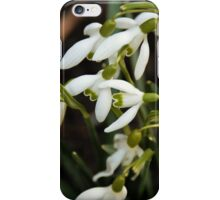 First sign of Spring: Snowdrops iPhone Case/Skin