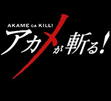 Akame Ga Kill by Crytiv PH