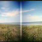 Northern Ontario landscape holgarama by jiorji