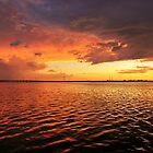 sunsets on florida's sea life by charlespeckcom