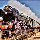The Flying Scotsman by Catherine Hamilton-Veal  ©