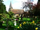 Spring in the Churchyard by Colin J Williams Photography