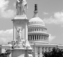US Capitol Building, Washington DC by Jaymes Williams