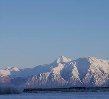 Winter Train~Matanuska Valley by Jackie Muncy