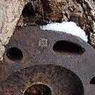 Iron Disc by SpiritFox