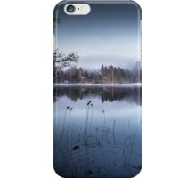 Early bird iPhone Case/Skin