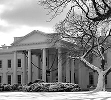 The White House Number 1 by Jaymes Williams