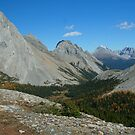 Whistling Ridge with larches,	Burstall pass  by cascoly