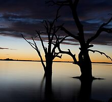 Barmera at Dusk by Dene Wessling