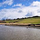 River Char At Charmouth by Susie Peek