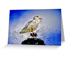 Squirt Greeting Card