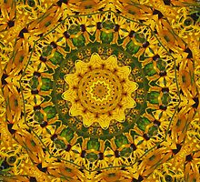 Black Eyed Susan Kaleidoscope by SmilinEyes