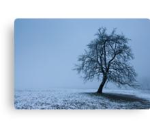 tree in winter Canvas Print