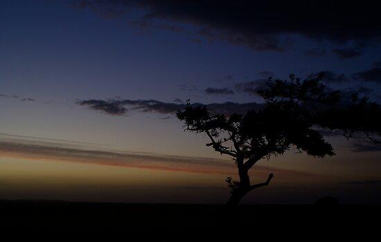 As The Sun Sets by Jane Keats