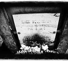 Old Biloxi Cemetery Boudreaux by lorispradley