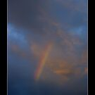 Rainbow Delight by Paul Cotelli
