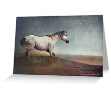 dust storm- white horse Greeting Card