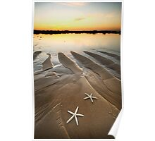 Two Little Starfish Poster