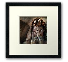 Shamanic Angel Framed Print
