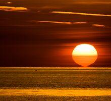 Sun Kiss by Jonicool