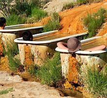 desert soak by Bob Moore