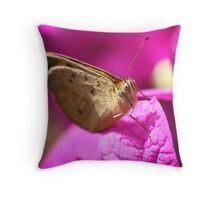 Butterfly Bliss Throw Pillow