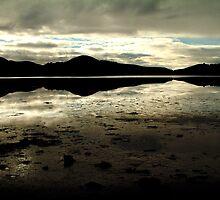 Hooper's Inlet, NZ by AlisonOneL
