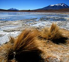 Altiplano lake under ice, southern Bolivia by Elaine Stevenson