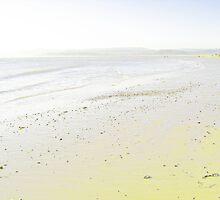 Exmouth Beach by Sam Mortimer