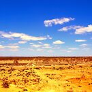 Desert Track by Clive