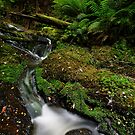 Mini Bulga Falls by Robert Mullner