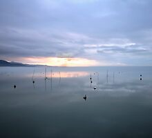 Trasimeno lake sunset by Antonio Zarli