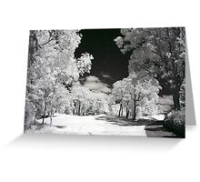 Lost ball Bayview golf course Greeting Card