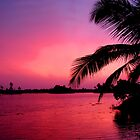 Kerala Sunset by Jeff Barnard
