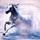 Splashing Arabian Mare by Joseph Barbara