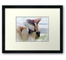 Too tired to talk Framed Print