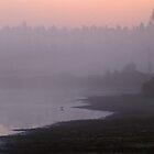 Morning on Tanker Lake by Bill Spengler